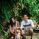 dog cat adoption process dfw lifelong rescue